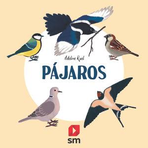 PAJAROS. . COLECCION NATURALEZA