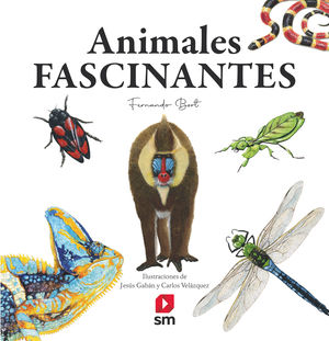ANIMALES FASCINANTES