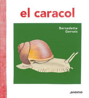 EL CARACOL