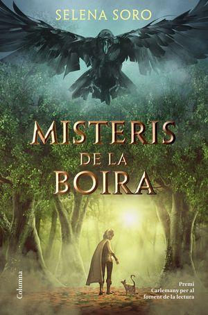 MISTERIS DE LA BOIRA